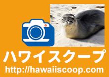 ハワイスクープ(HIscoop)