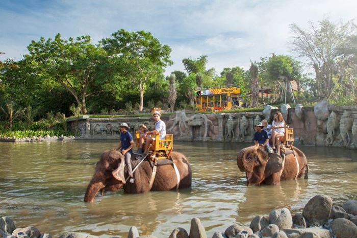 バリで人気のアクティビティ、象と触れ合う自然の中でのエレファントライド。