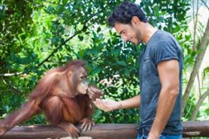 動物とのふれあい&スタッフによる動物説明 オランウータンと朝食