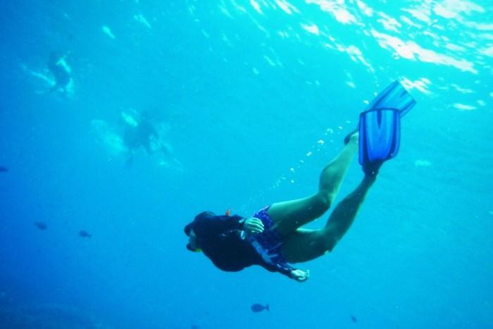 300種類の珊瑚と570種類の熱帯魚