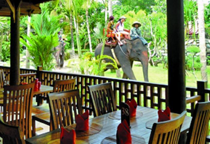 園内でのインドネシア料理のランチをお楽しみ下さい。