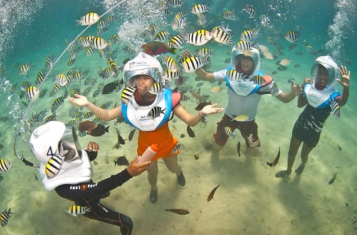 水深5mの海中をプロのダイバーと一緒に約30分間の水中散歩を楽しみましょう。