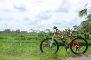 サイクリング開始