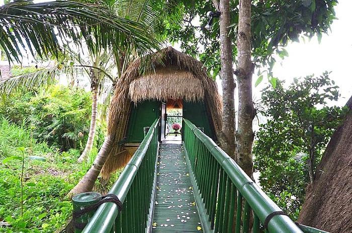 ツリースパへと渡ります。スパルームは、天然スタイル。 歩くとみしみしと木の床は音をたてます。