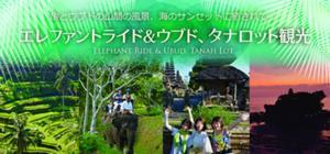 象とウブドの山間の風景、最後は海の荘厳なサンセットに癒されて… ~エレファントライド&ウブド、タナロット観光~