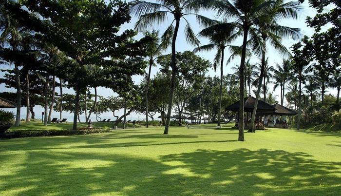 やしの木が海風にそよぐビーチリゾート