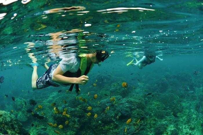 熱帯のサンゴ礁と美しい海が温かく迎えてくれます。シュノーケリングでトロピカルフィッシュに会いに行こう。