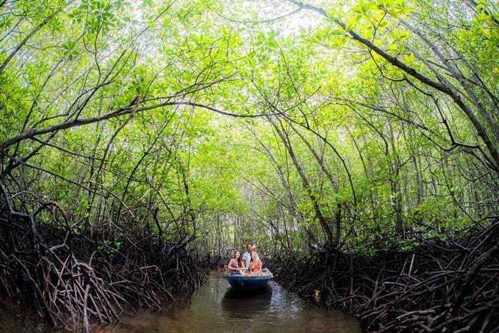 小舟に 乗ってマングローブジャングルを 探検