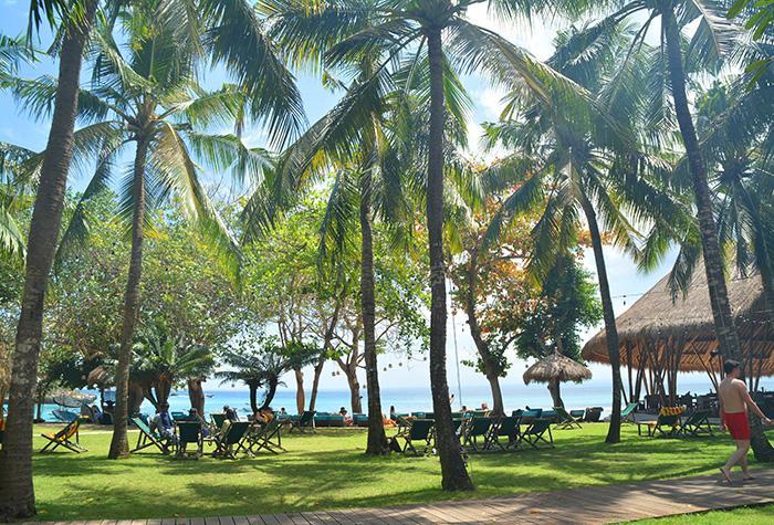 ヤシの木の下やビーチでのんびり過ごすのよし、アクティビティを満喫したり楽しみ方は自由自在。