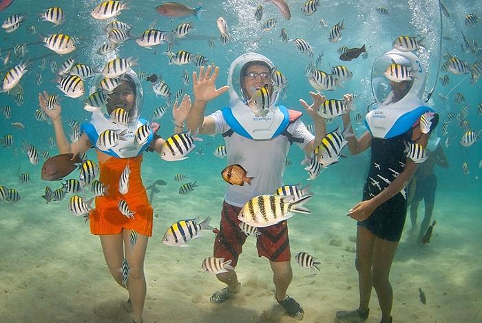 スノーケリングやスキューバダイビングのように熱帯の魚や美しいサンゴ礁を楽しむ事ができます。