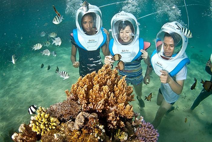 クリスタルのように澄んだな海中に暮らすカラフルな熱帯魚や美しいサンゴ礁が目の前に。