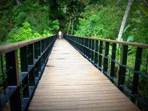 カユマニスウブドに到着後、スパへ。この橋を越えるよ。