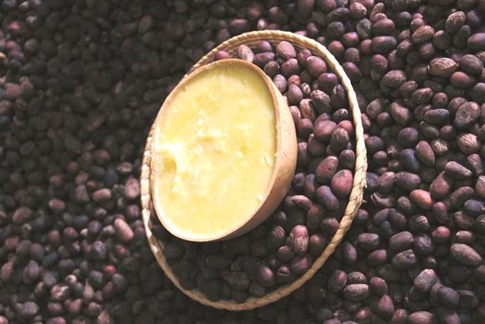西アフリカで貴重な美容エキスとして珍重されてきたシアのウルトラリッチ シアバター