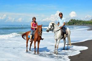 潮風を感じながら渚を散歩するホースライディングは気分爽快!