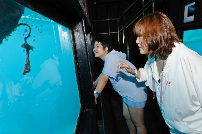 ポントゥーン(浮島)に設置された水中見学室は魚たちを間近に観察するにはもってこいの場所!