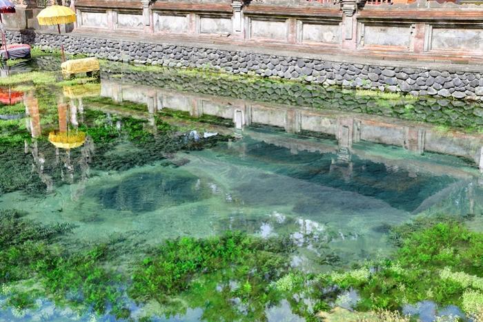 絶え間なく、聖水が湧き出る不思議な泉