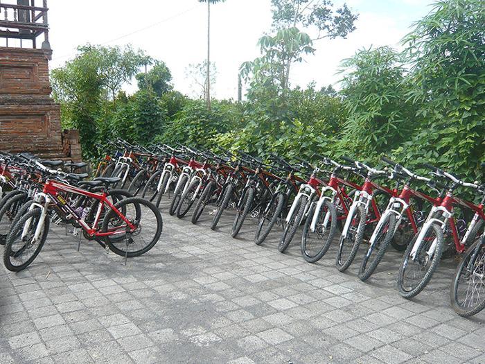 マウンテンバイクを選び、ヘルメットと手袋をつけて準備。乗り心地やギアの調子も確かめます。