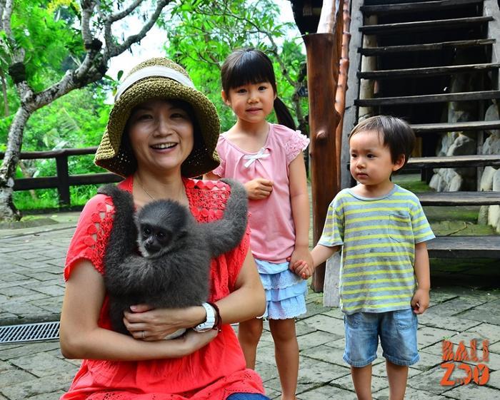 動物と身近に触れ合う体験