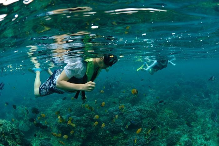 熱帯のサンゴ礁と美しい海が温かく迎えてくれます。