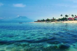 海中には美しいサンゴやカラフルな熱帯 魚がいっぱい!