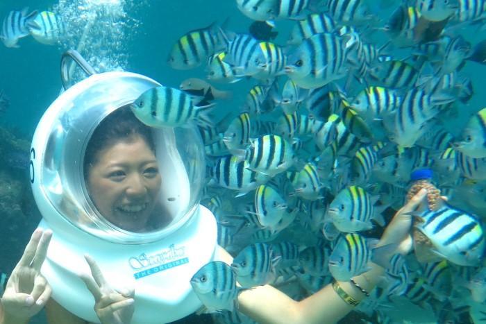 地上と同じように呼 吸しながら、かわいい熱帯魚 と遊べるシーウォーカー