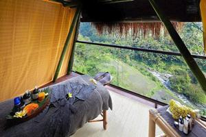 マンゴーの樹の上にバンブーとアランアランの自然素材で造られた「ツリースパ」