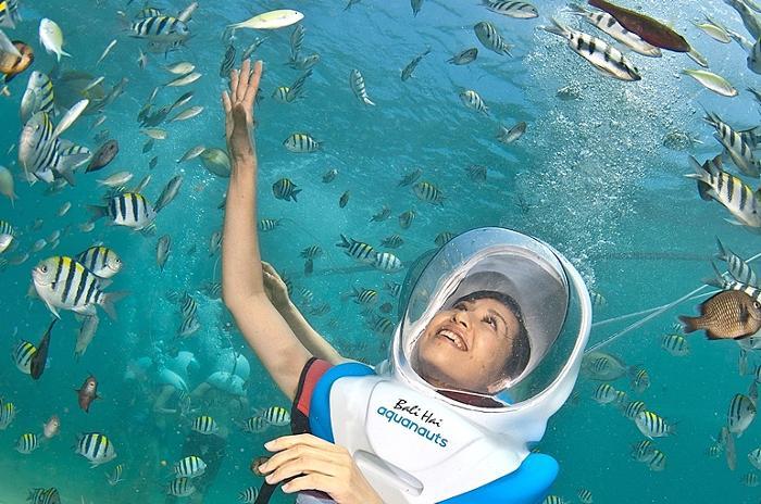 水深5mの海中をプロのダイバーと一緒に30分間の水中散歩を楽しみましょう。