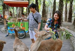 どんな動物たちとの触れ合いが待っているでしょう。